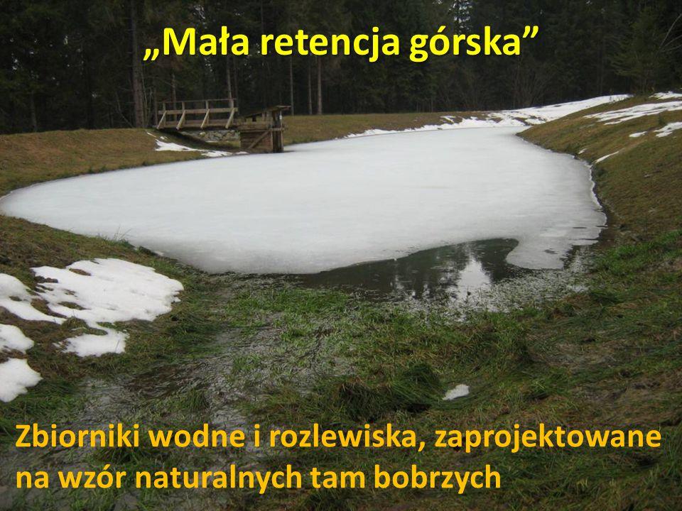 """""""Mała retencja górska Zbiorniki wodne i rozlewiska, zaprojektowane na wzór naturalnych tam bobrzych"""