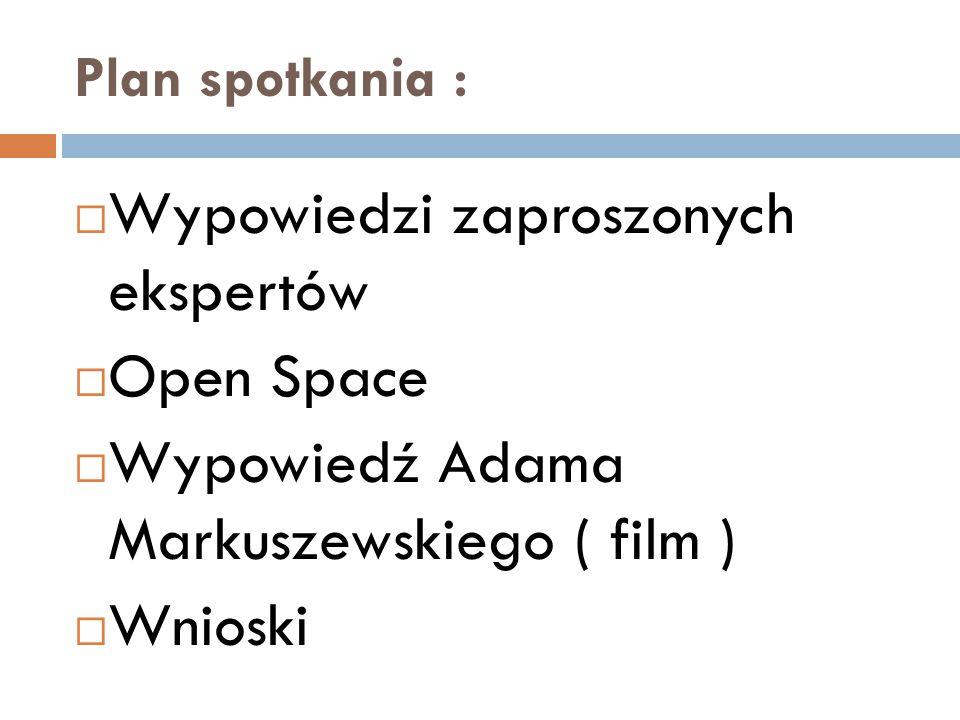 Plan spotkania :  Wypowiedzi zaproszonych ekspertów  Open Space  Wypowiedź Adama Markuszewskiego ( film )  Wnioski