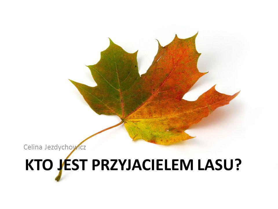 KTO JEST PRZYJACIELEM LASU? Celina Jezdychowicz