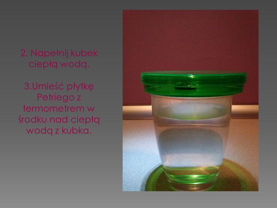 2. Napełnij kubek ciepłą wodą. 3.Umieść płytkę Petriego z termometrem w środku nad ciepłą wodą z kubka.