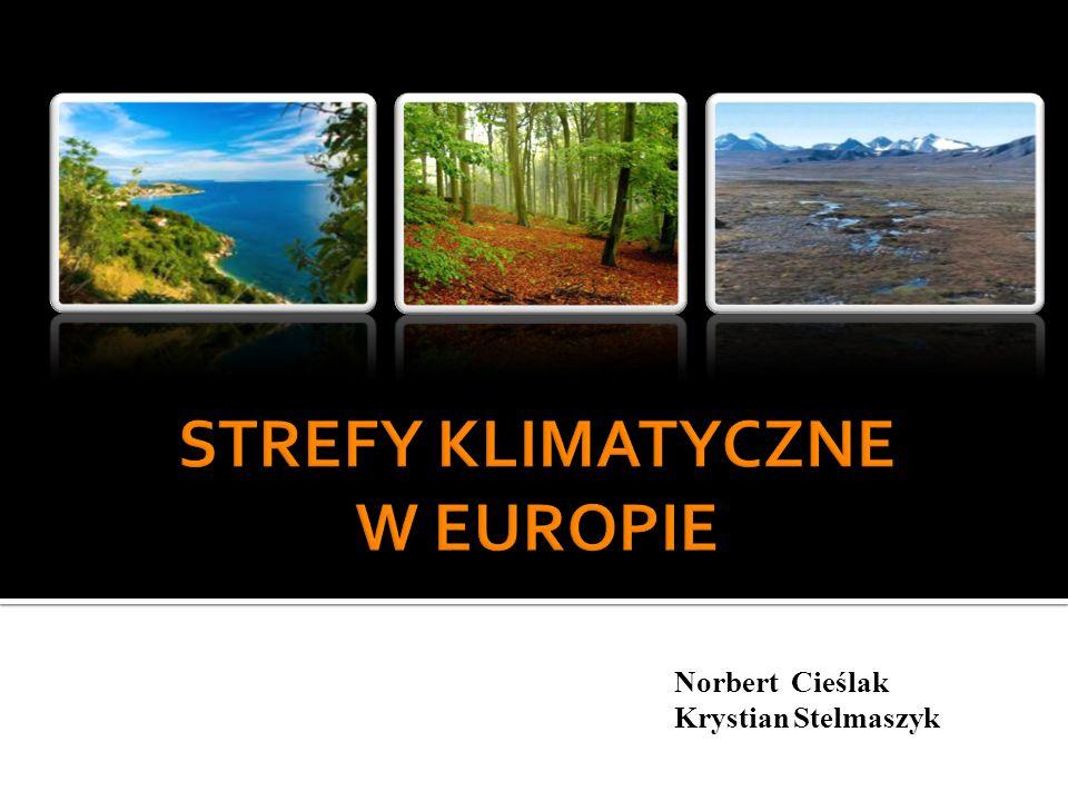 Norbert Cieślak Krystian Stelmaszyk