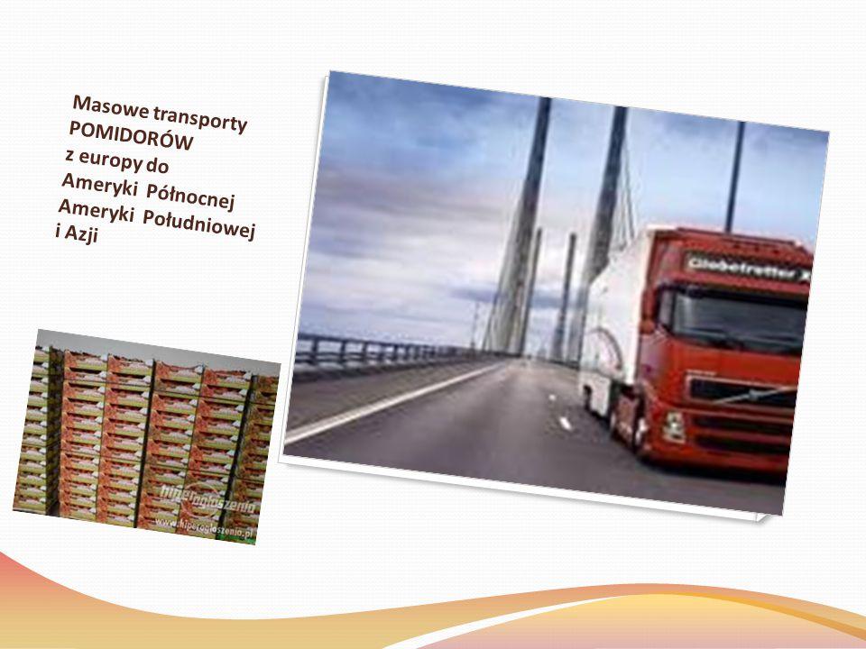 Masowe transporty POMIDORÓW z europy do Ameryki Północnej Ameryki Południowej i Azji