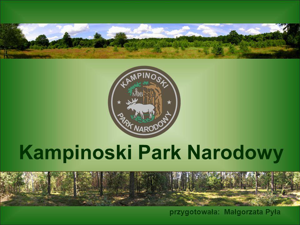 Kampinoski Park Narodowy przygotowała: Małgorzata Pyła