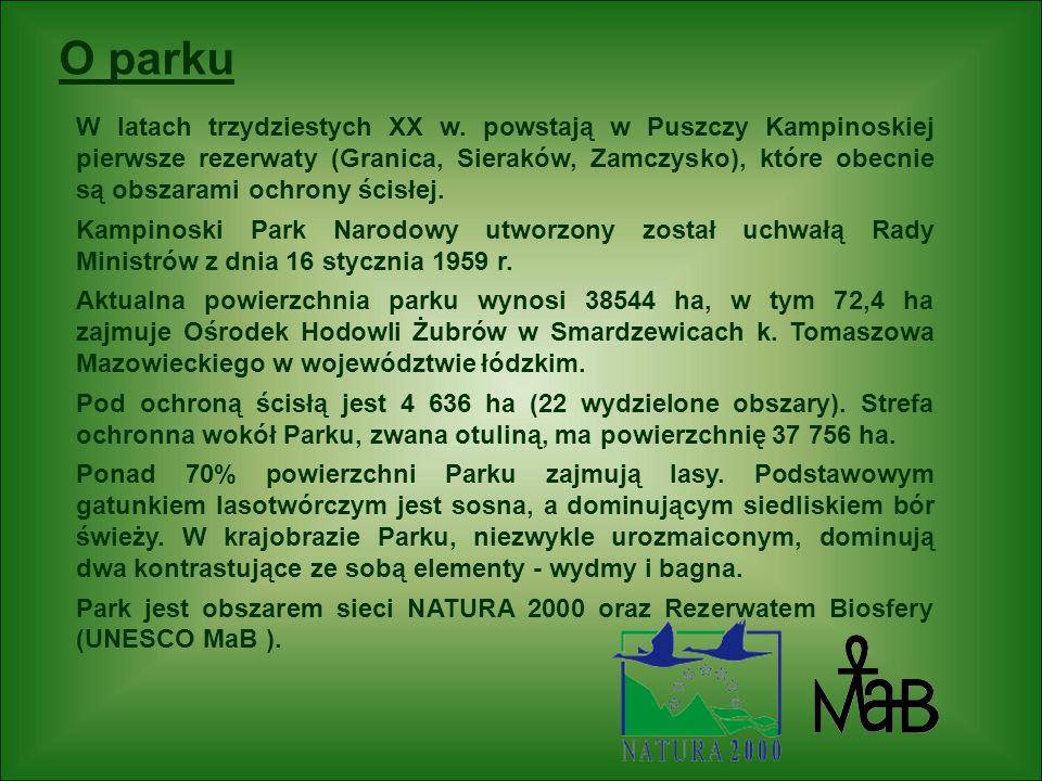 O parku W latach trzydziestych XX w. powstają w Puszczy Kampinoskiej pierwsze rezerwaty (Granica, Sieraków, Zamczysko), które obecnie są obszarami och