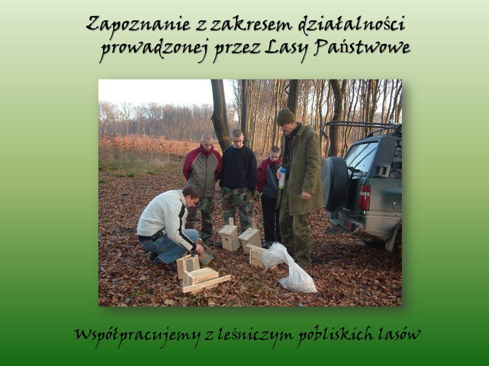 Współpracujemy z le ś niczym pobliskich lasów Zapoznanie z zakresem działalno ś ci prowadzonej przez Lasy Pa ń stwowe