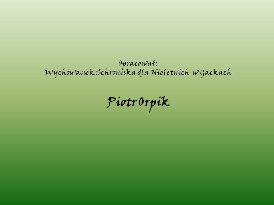 Opracował: Wychowanek Schroniska dla Nieletnich w Gackach Piotr Orpik