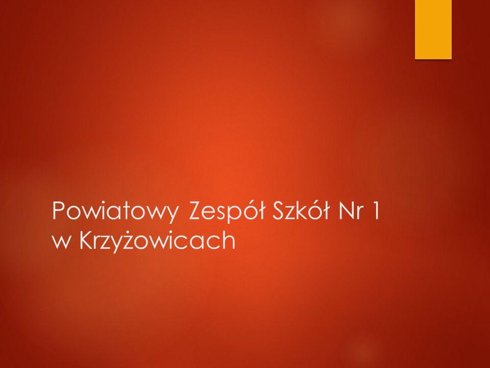 Powiatowy Zespół Szkół Nr 1 w Krzyżowicach