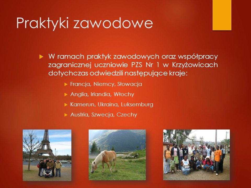 Praktyki zawodowe  W ramach praktyk zawodowych oraz współpracy zagranicznej uczniowie PZS Nr 1 w Krzyżowicach dotychczas odwiedzili następujące kraje:  Francja, Niemcy, Słowacja  Anglia, Irlandia, Włochy  Kamerun, Ukraina, Luksemburg  Austria, Szwecja, Czechy