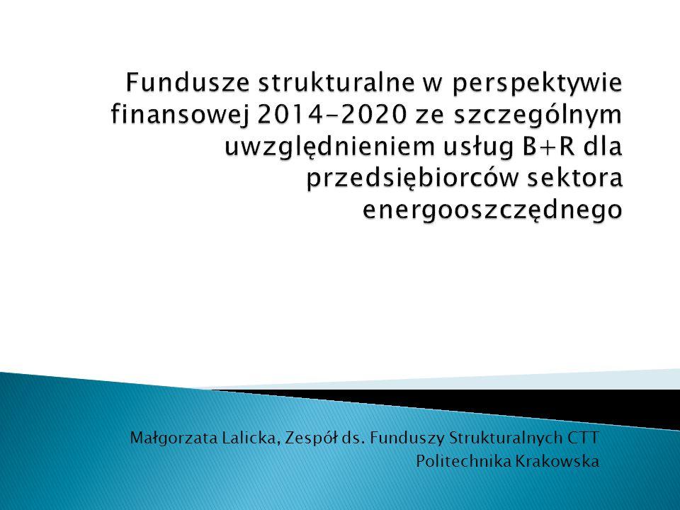 Małgorzata Lalicka, Zespół ds. Funduszy Strukturalnych CTT Politechnika Krakowska