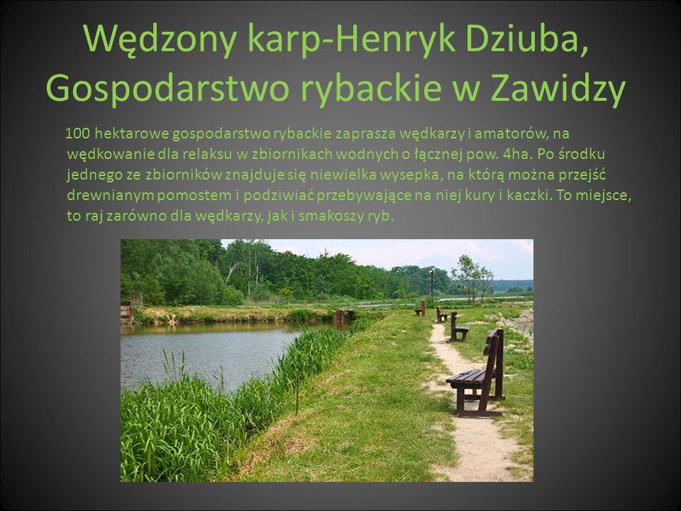 Wędzony karp-Henryk Dziuba, Gospodarstwo rybackie w Zawidzy 100 hektarowe gospodarstwo rybackie zaprasza wędkarzy i amatorów, na wędkowanie dla relaks