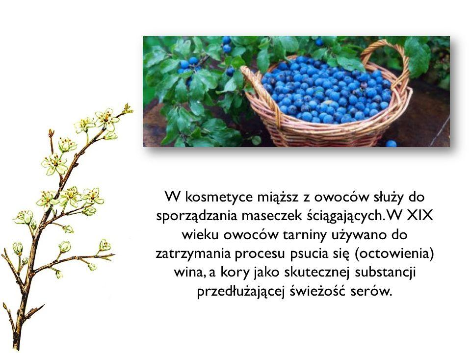 W kosmetyce miąższ z owoców służy do sporządzania maseczek ściągających. W XIX wieku owoców tarniny używano do zatrzymania procesu psucia się (octowie
