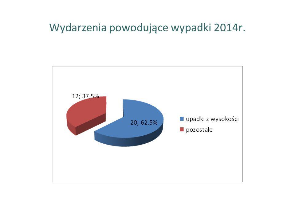 Wydarzenia powodujące wypadki 2014r.