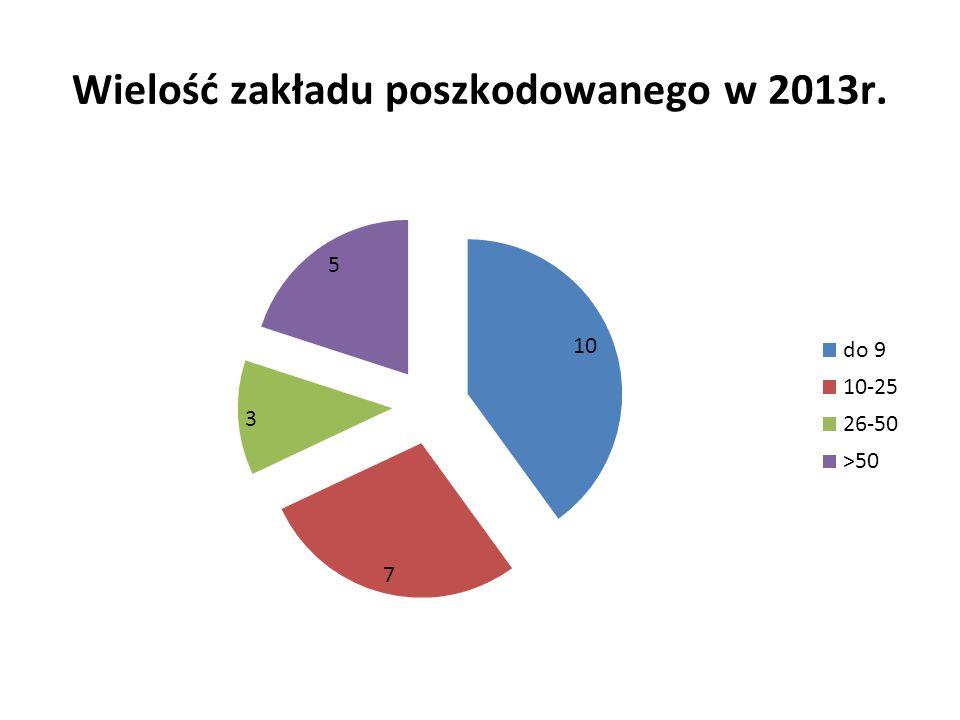 Wielość zakładu poszkodowanego w 2013r.