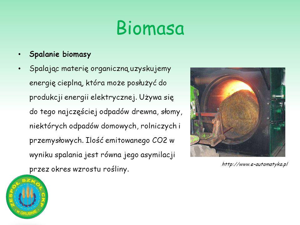 Biomasa Spalanie biomasy Spalając materię organiczną uzyskujemy energię cieplną, która może posłużyć do produkcji energii elektrycznej. Używa się do t
