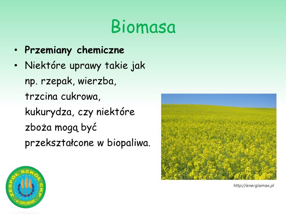 Biomasa Przemiany chemiczne Niektóre uprawy takie jak np. rzepak, wierzba, trzcina cukrowa, kukurydza, czy niektóre zboża mogą być przekształcone w bi