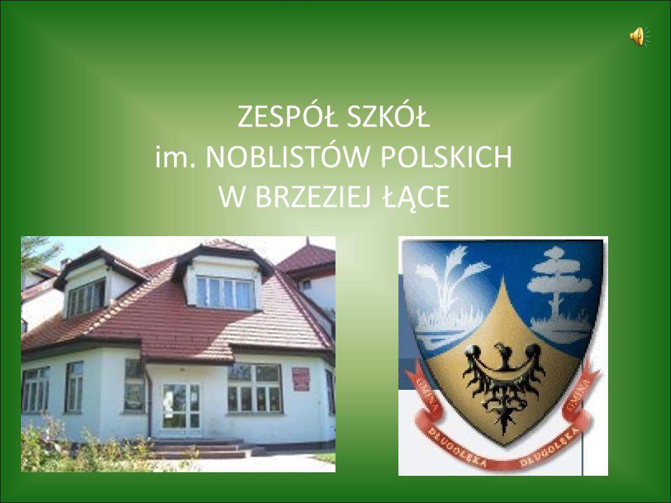 Rozbudowa Szkoły Szkoła w Brzeziej Łące powstała w 1945 roku tuż po zakończeniu działań wojennych.