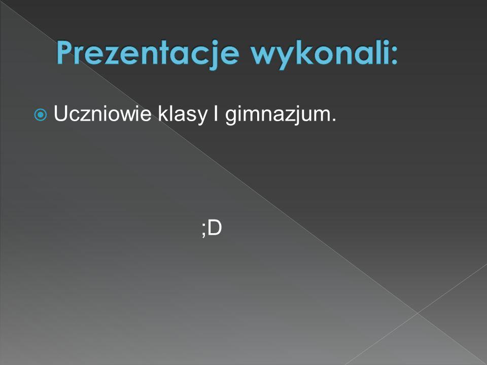  Uczniowie klasy I gimnazjum. ;D