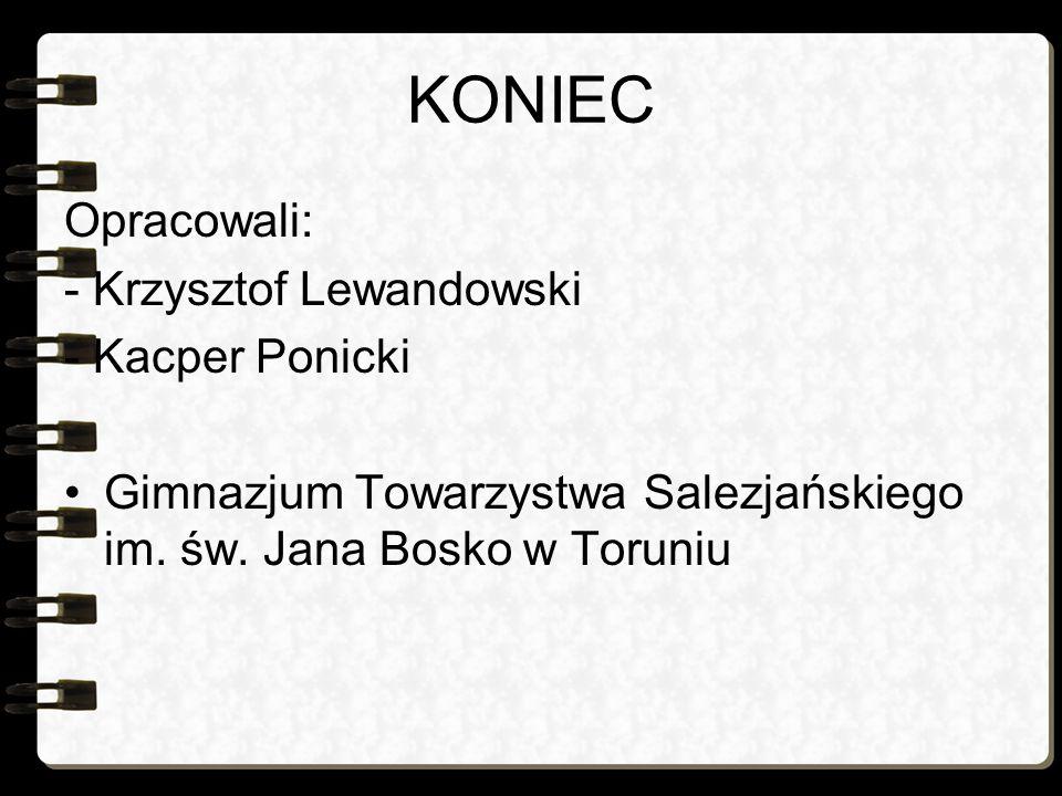 KONIEC Opracowali: - Krzysztof Lewandowski - Kacper Ponicki Gimnazjum Towarzystwa Salezjańskiego im. św. Jana Bosko w Toruniu