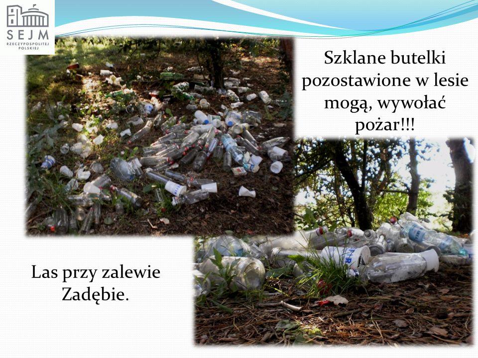Szklane butelki pozostawione w lesie mogą, wywołać pożar!!! Las przy zalewie Zadębie.
