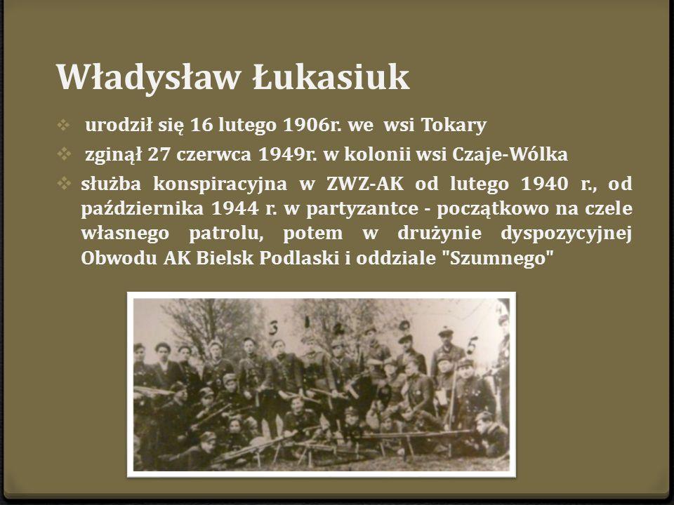 Krzyż na skraju lasu rudzkiego w miejscu śmierci kpt. Władysława Łukasiuka Młota .