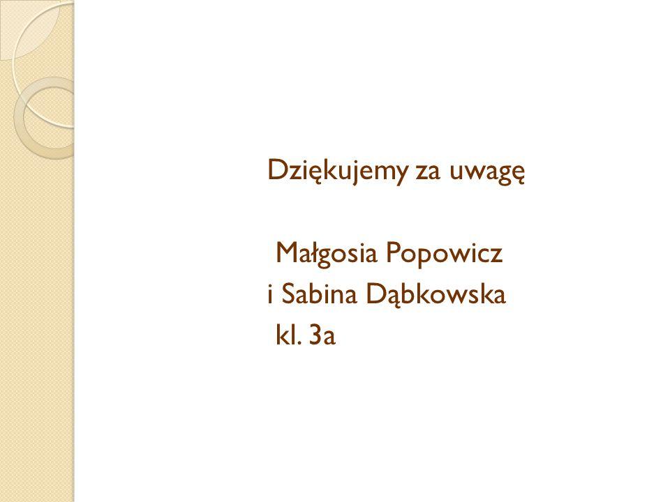 Dziękujemy za uwagę Małgosia Popowicz i Sabina Dąbkowska kl. 3a