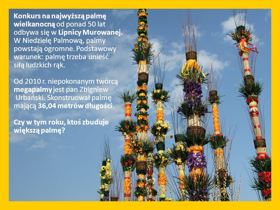 Konkurs na najwyższą palmę wielkanocną od ponad 50 lat odbywa się w Lipnicy Murowanej. W Niedzielę Palmową, palmy powstają ogromne. Podstawowy warunek