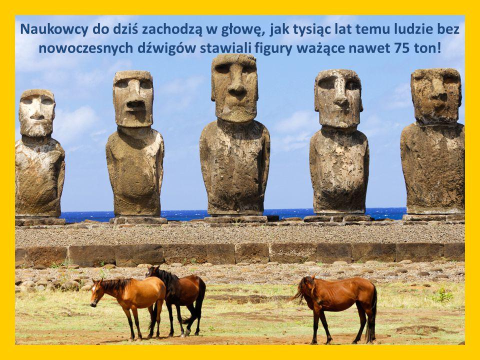 Naukowcy do dziś zachodzą w głowę, jak tysiąc lat temu ludzie bez nowoczesnych dźwigów stawiali figury ważące nawet 75 ton!