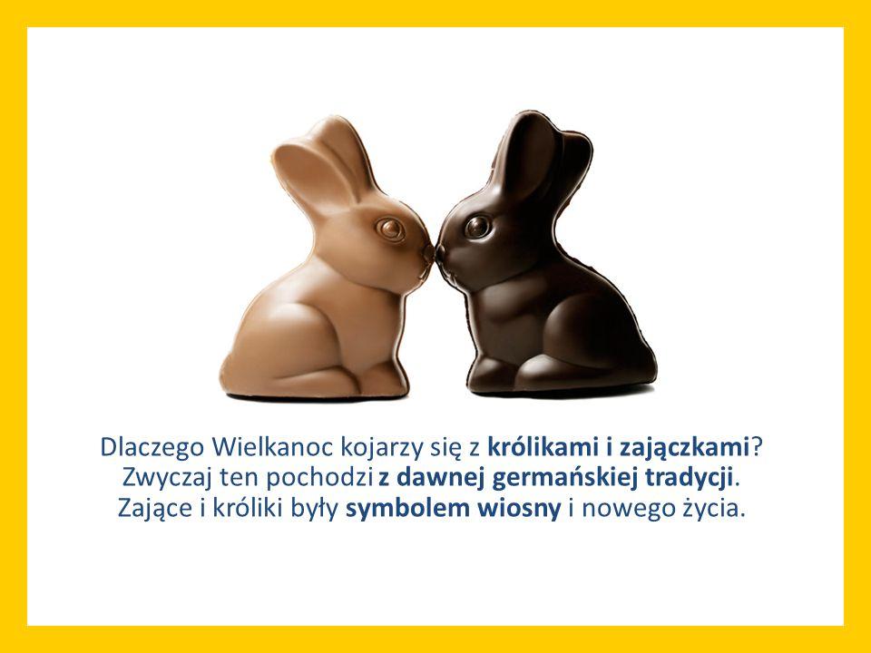 Dlaczego Wielkanoc kojarzy się z królikami i zajączkami? Zwyczaj ten pochodzi z dawnej germańskiej tradycji. Zające i króliki były symbolem wiosny i n