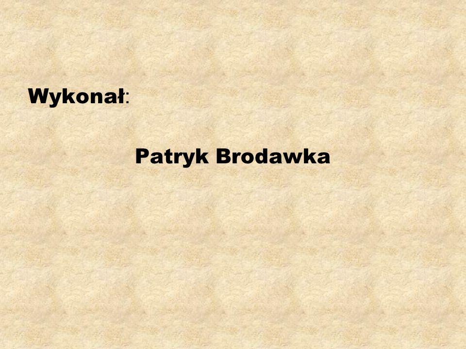 Wykonał : Patryk Brodawka