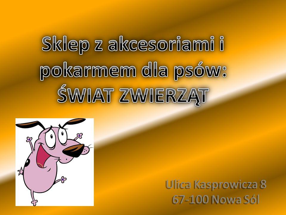Ulica Kasprowicza 8 67-100 Nowa Sól