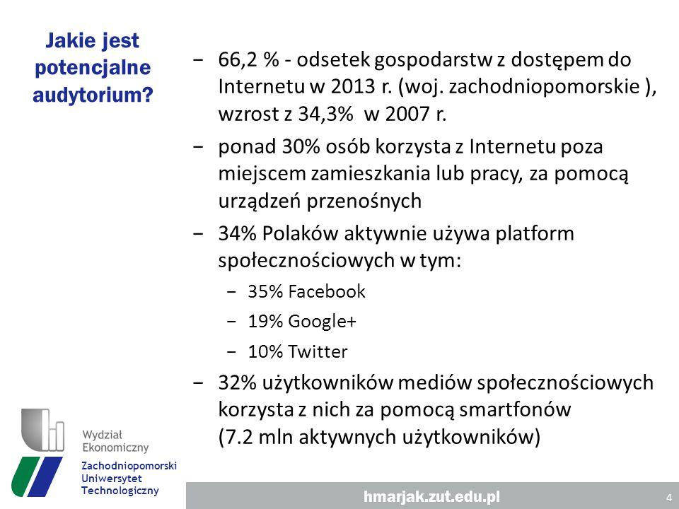 Jakie jest potencjalne audytorium. −66,2 % - odsetek gospodarstw z dostępem do Internetu w 2013 r.