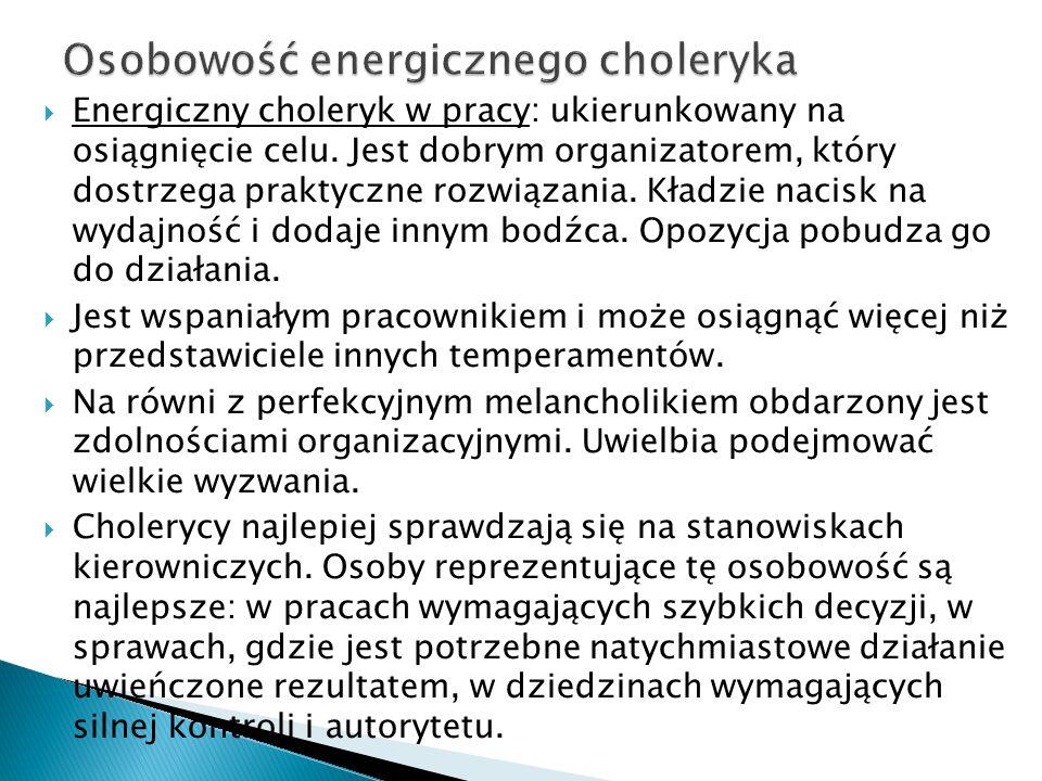  Energiczny choleryk w pracy: ukierunkowany na osiągnięcie celu. Jest dobrym organizatorem, który dostrzega praktyczne rozwiązania. Kładzie nacisk na