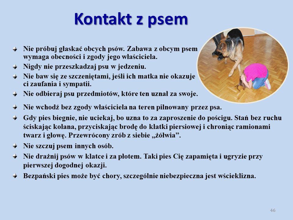 Kontakt z psem Nie wchodź bez zgody właściciela na teren pilnowany przez psa. Gdy pies biegnie, nie uciekaj, bo uzna to za zaproszenie do pościgu. Sta