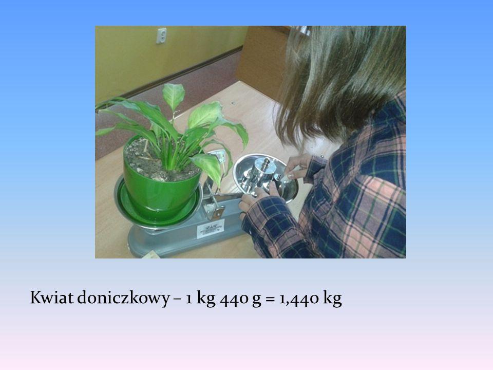 Kwiat doniczkowy – 1 kg 440 g = 1,440 kg