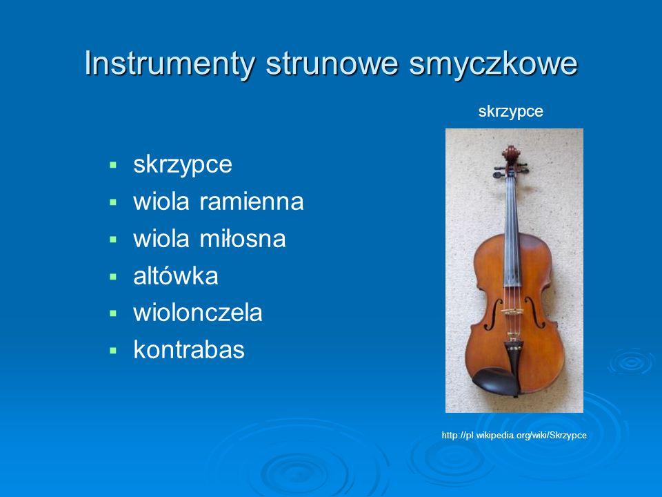Instrumenty strunowe smyczkowe   skrzypce   wiola ramienna   wiola miłosna   altówka   wiolonczela   kontrabas http://pl.wikipedia.org/wik