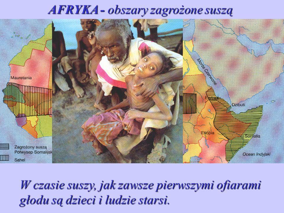 Sahel - obszar położony na północy Afryki między Saharą, a wilgotniejszymi rejonami zachodniej i środkowej części kontynentu. AFRYKA - obszary zagrożo