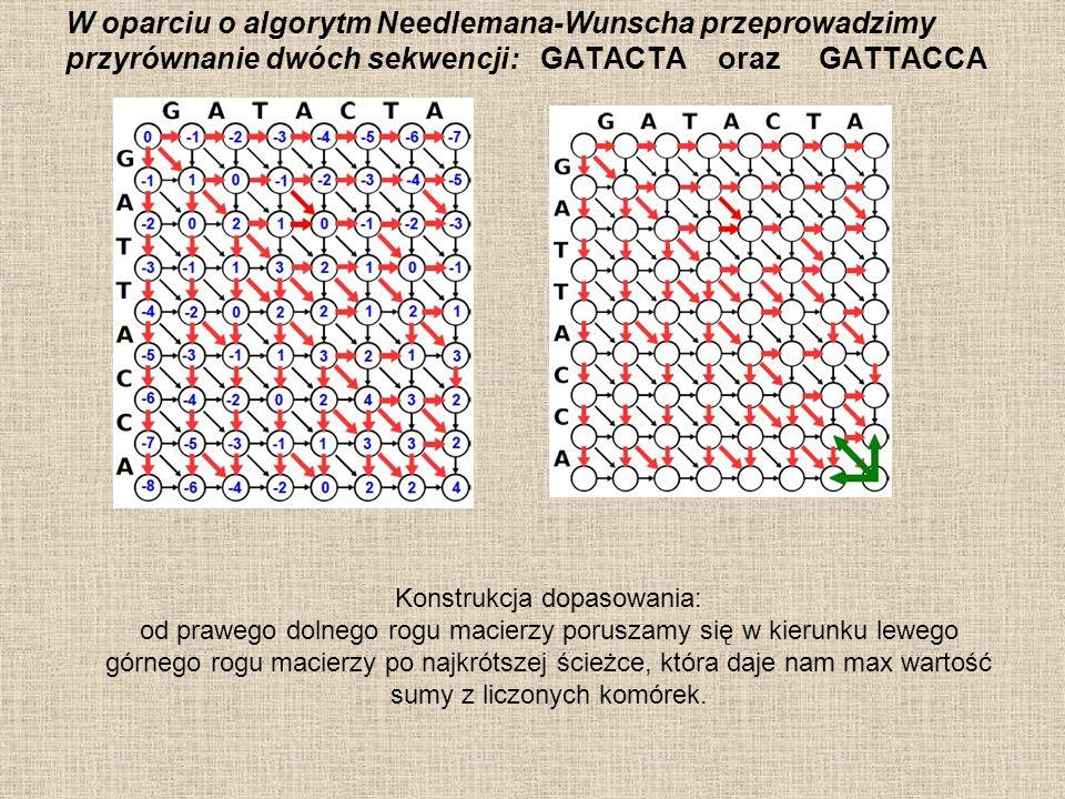 W oparciu o algorytm Needlemana-Wunscha przeprowadzimy przyrównanie dwóch sekwencji: GATACTA oraz GATTACCA Konstrukcja dopasowania: od prawego dolnego