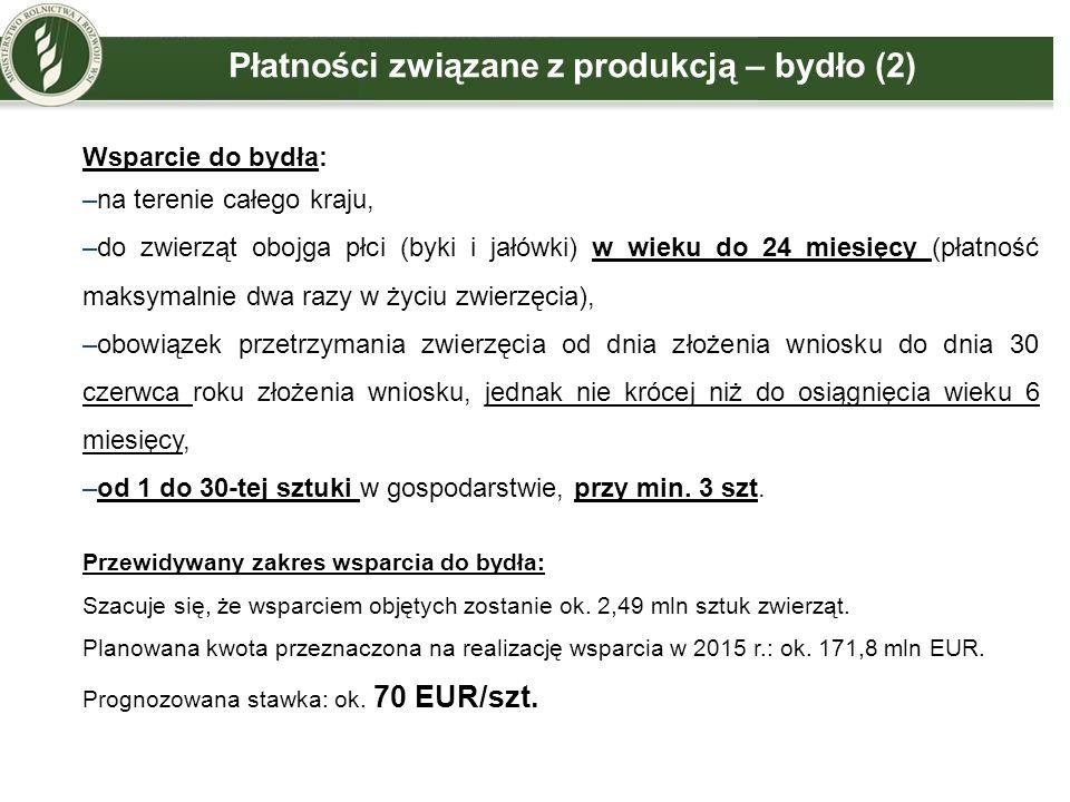 Płatności związane z produkcją – bydło (2) Wsparcie do bydła: –na terenie całego kraju, –do zwierząt obojga płci (byki i jałówki) w wieku do 24 miesię