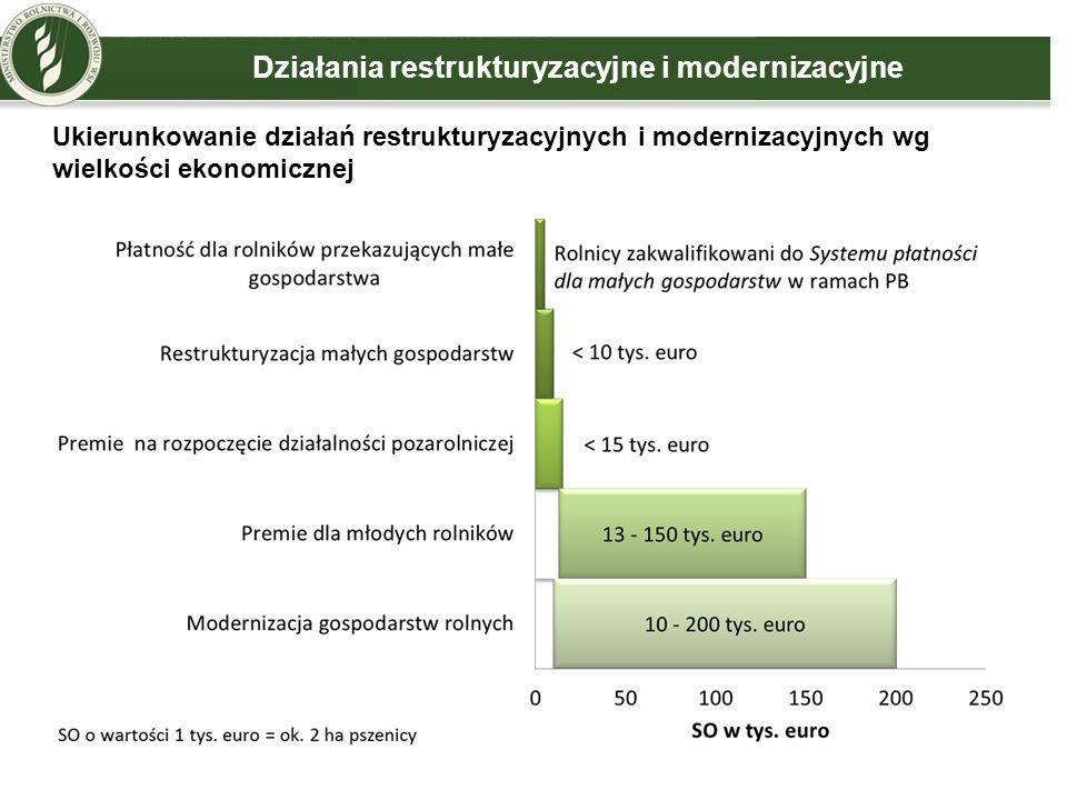 Działania restrukturyzacyjne i modernizacyjne Ukierunkowanie działań restrukturyzacyjnych i modernizacyjnych wg wielkości ekonomicznej