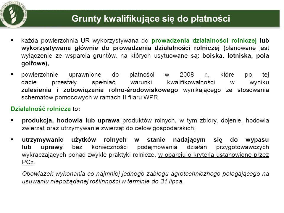  każda powierzchnia UR wykorzystywana do prowadzenia działalności rolniczej lub wykorzystywana głównie do prowadzenia działalności rolniczej (planowa