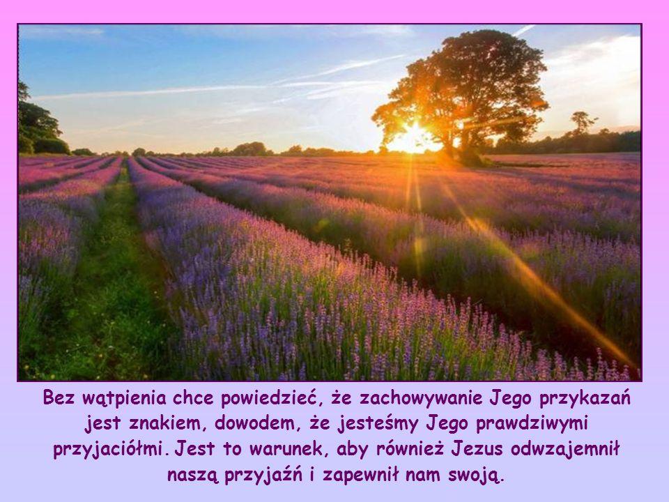 """""""Trwać w Jego miłości . Co Jezus chce powiedzieć przez te słowa?"""