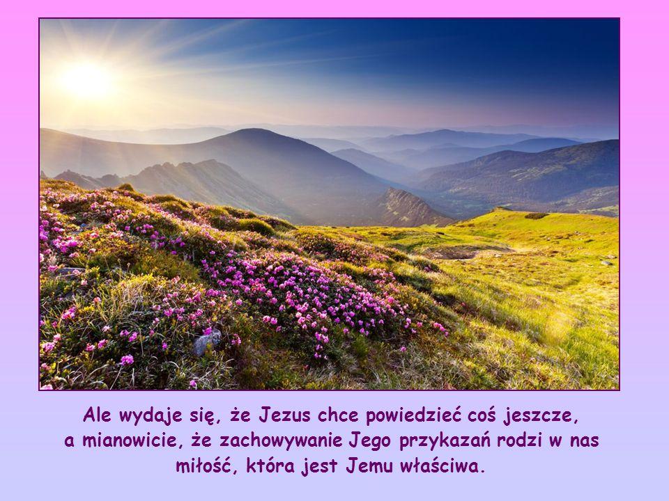 Bez wątpienia chce powiedzieć, że zachowywanie Jego przykazań jest znakiem, dowodem, że jesteśmy Jego prawdziwymi przyjaciółmi.