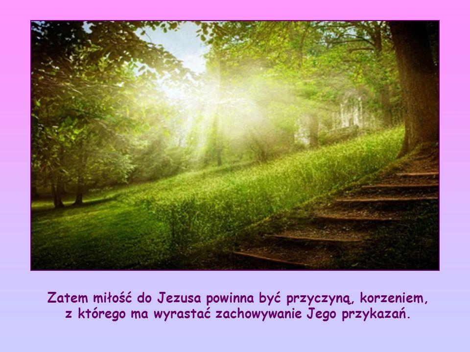 """Cytowane słowa odwołują się do jednego z poprzednich wersetów, w którym Jezus mówi do swoich Apostołów: """"Jeżeli mnie miłujecie, będziecie zachowywać moje przykazania (J 14,15)"""