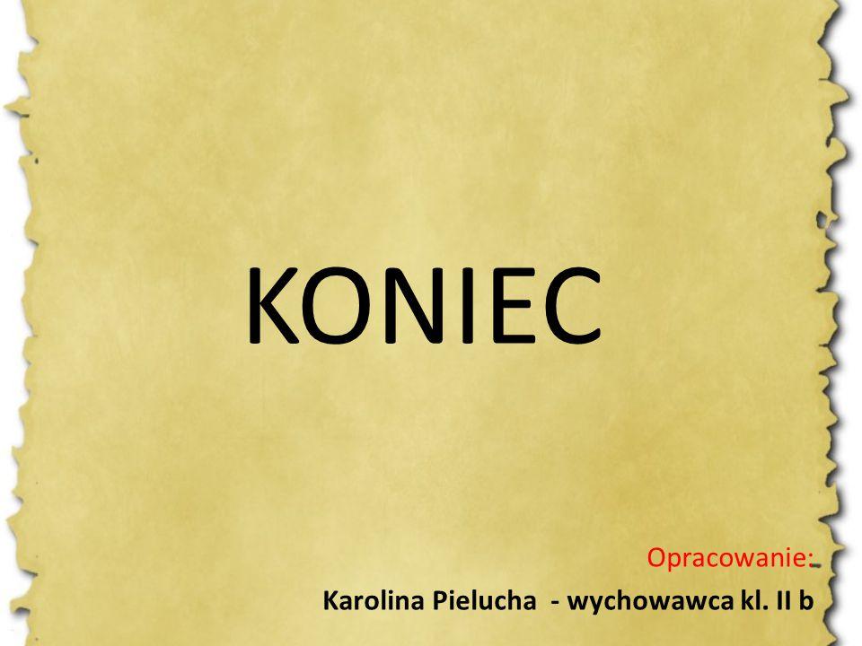 KONIEC Opracowanie: Karolina Pielucha - wychowawca kl. II b