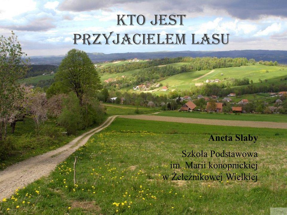 Kto jest przyjacielem lasu Aneta Słaby Szkoła Podstawowa im. Marii konopnickiej w Żeleźnikowej Wielkiej