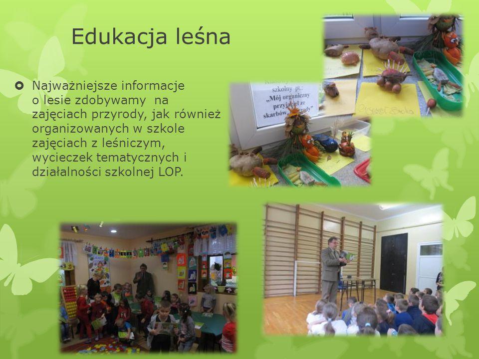 Edukacja leśna  Najważniejsze informacje o lesie zdobywamy na zajęciach przyrody, jak również organizowanych w szkole zajęciach z leśniczym, wycieczek tematycznych i działalności szkolnej LOP.
