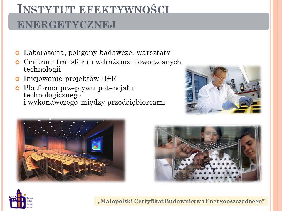 """I NSTYTUT EFEKTYWNOŚCI ENERGETYCZNEJ Laboratoria, poligony badawcze, warsztaty Centrum transferu i wdrażania nowoczesnych technologii Inicjowanie projektów B+R Platforma przepływu potencjału technologicznego i wykonawczego między przedsiębiorcami """"Małopolski Certyfikat Budownictwa Energooszczędnego"""