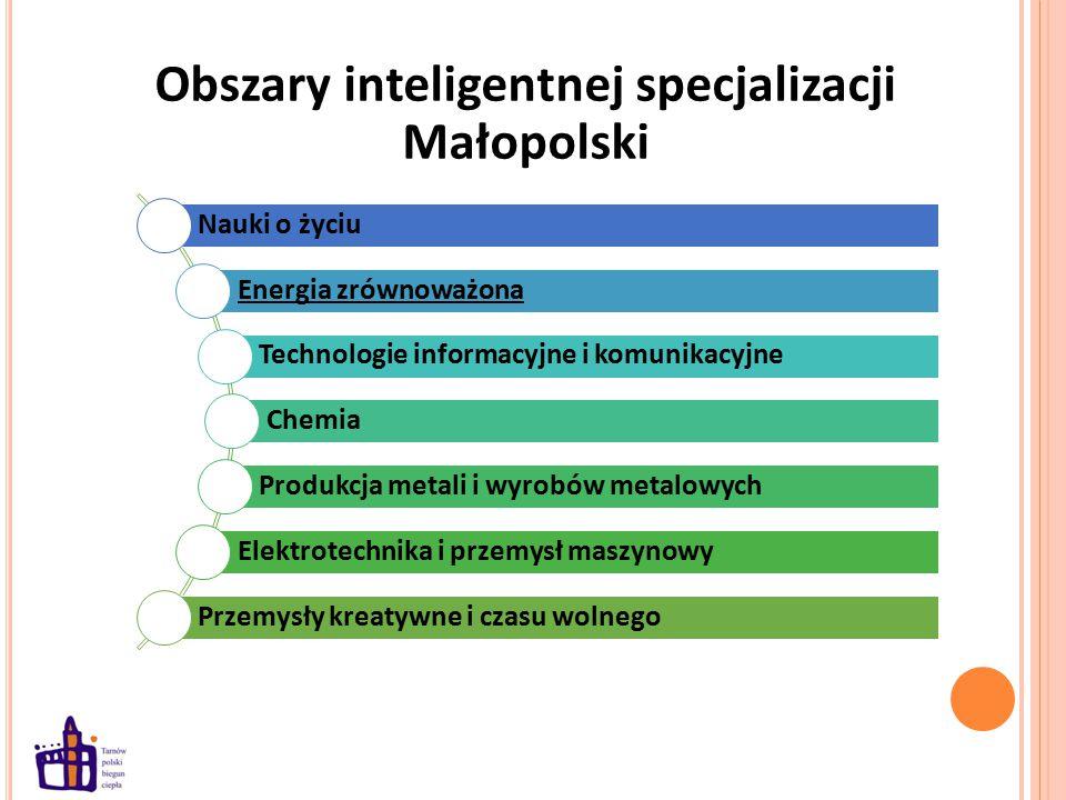 Obszary inteligentnej specjalizacji Małopolski Nauki o życiu Energia zrównoważona Technologie informacyjne i komunikacyjne Chemia Produkcja metali i wyrobów metalowych Elektrotechnika i przemysł maszynowy Przemysły kreatywne i czasu wolnego