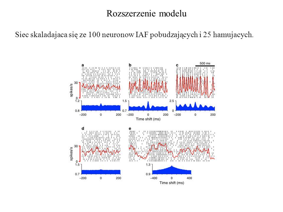Rozszerzenie modelu Siec skaladajaca się ze 100 neuronow IAF pobudzających i 25 hamujacych.