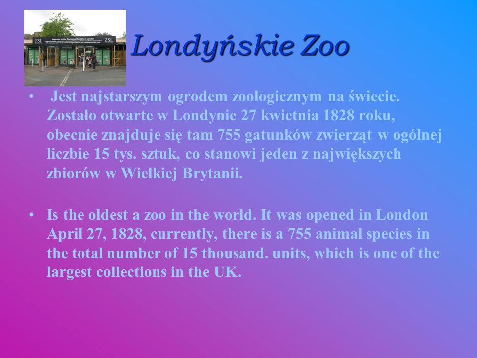 Londyńskie Zoo Jest najstarszym ogrodem zoologicznym na świecie. Zostało otwarte w Londynie 27 kwietnia 1828 roku, obecnie znajduje się tam 755 gatunk